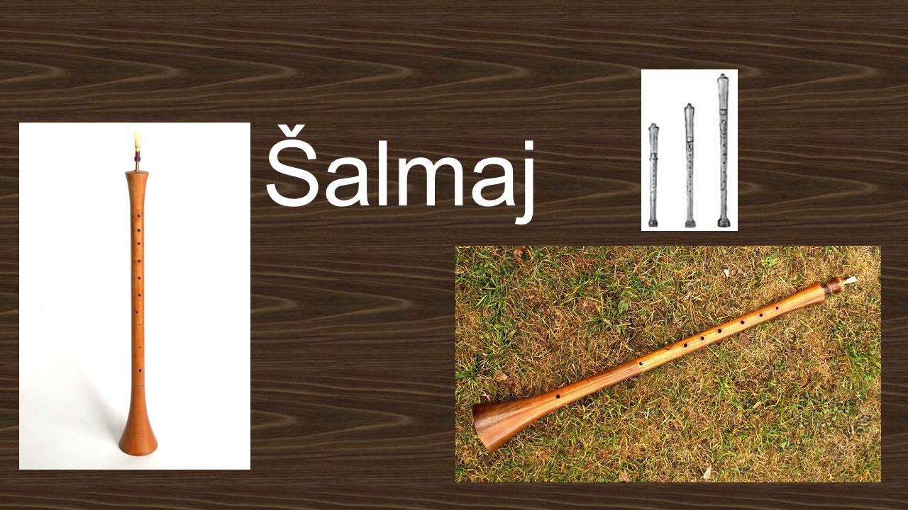 Šalmaj je dřevěný dechový nástroj s dvojitým plátkem (strojkem).