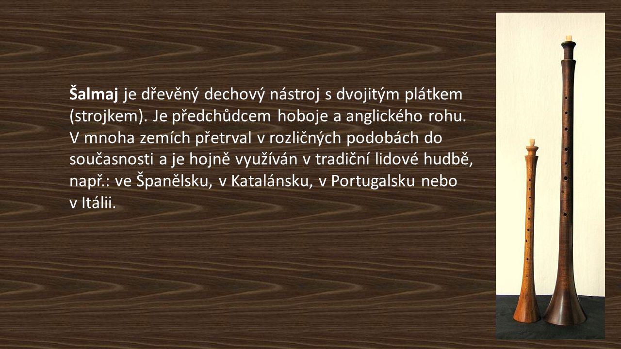 Šalmaj je dřevěný dechový nástroj s dvojitým plátkem (strojkem). Je předchůdcem hoboje a anglického rohu. V mnoha zemích přetrval v rozličných podobác