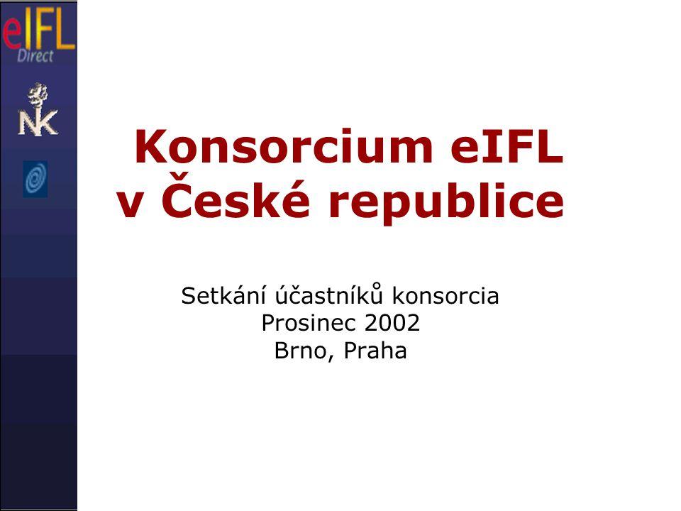 Konsorcium eIFL v České republice Setkání účastníků konsorcia Prosinec 2002 Brno, Praha