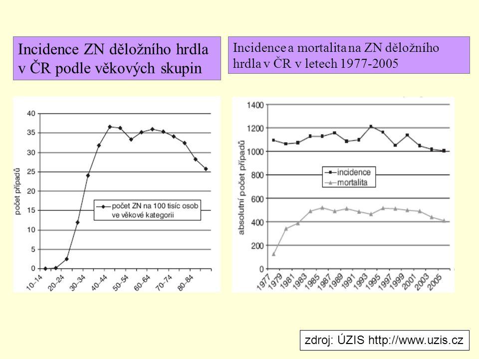 Incidence ZN děložního hrdla v ČR podle věkových skupin Incidence a mortalita na ZN děložního hrdla v ČR v letech 1977-2005 zdroj: ÚZIS http://www.uzi