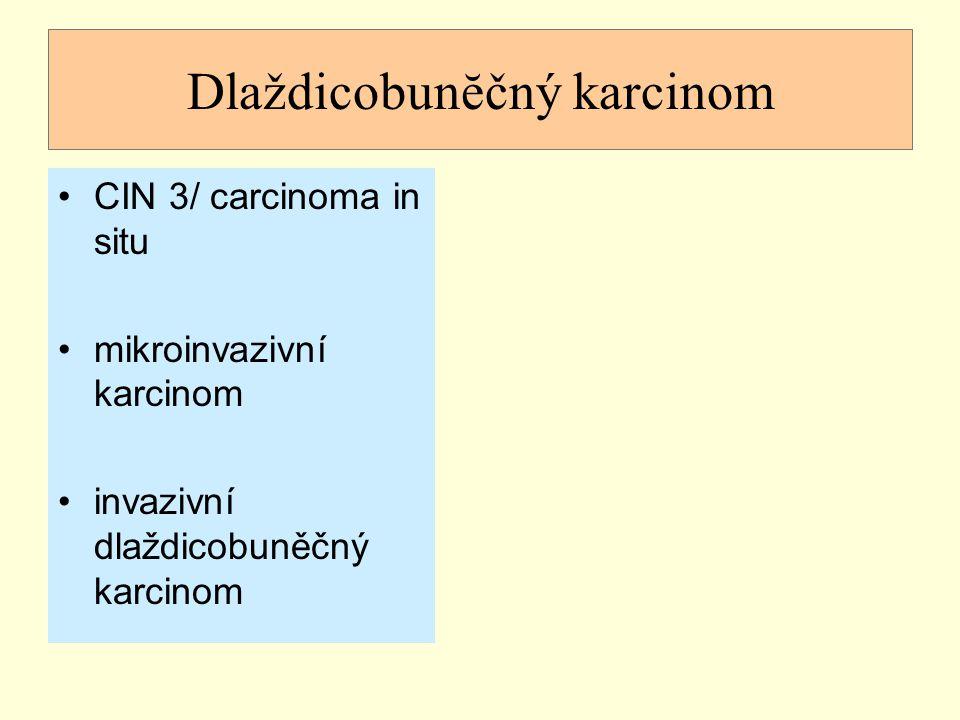 Dlaždicobunĕčný karcinom CIN 3/ carcinoma in situ mikroinvazivní karcinom invazivní dlaždicobuněčný karcinom