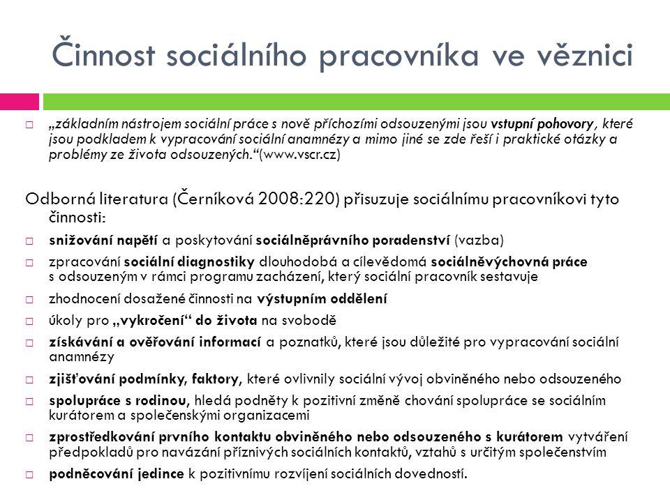 Pojetí pachatele jako uživatele drog  Kdo pojetí definuje: Adiktologie, Psychologie,  Kdo pojetí uplatňuje: Neziskové organizace pracující s lidmi se závislostí (př.