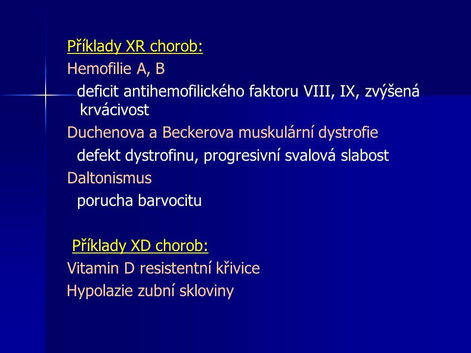 Příklady XR chorob: Hemofilie A, B deficit antihemofilického faktoru VIII, IX, zvýšená krvácivost Duchenova a Beckerova muskulární dystrofie defekt dy