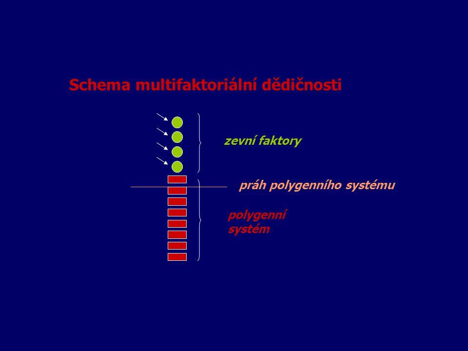 Schema multifaktoriální dědičnosti zevní faktory práh polygenního systému polygenní systém