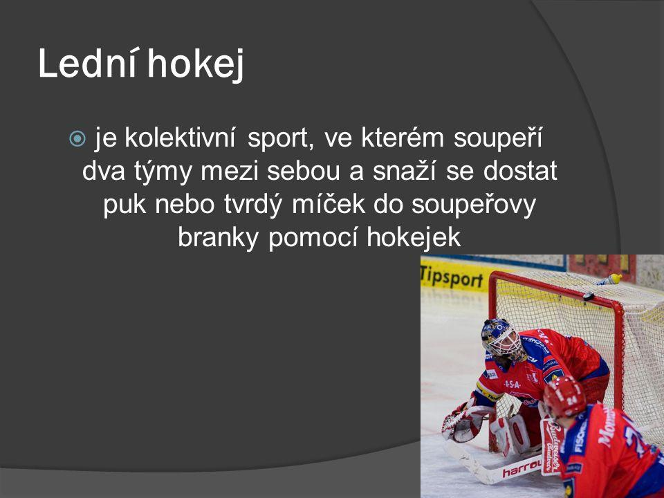  je kolektivní sport, ve kterém soupeří dva týmy mezi sebou a snaží se dostat puk nebo tvrdý míček do soupeřovy branky pomocí hokejek