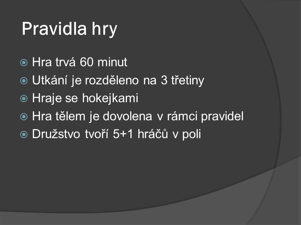 Pravidla hry  Hra trvá 60 minut  Utkání je rozděleno na 3 třetiny  Hraje se hokejkami  Hra tělem je dovolena v rámci pravidel  Družstvo tvoří 5+1 hráčů v poli