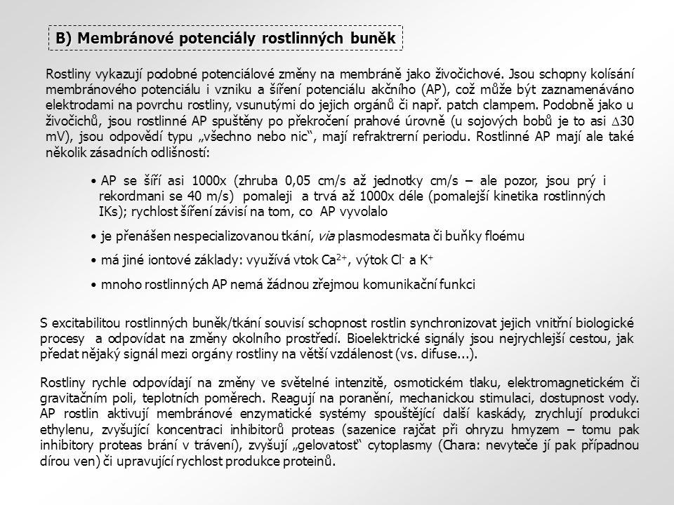B) Membránové potenciály rostlinných buněk AP se šíří asi 1000x (zhruba 0,05 cm/s až jednotky cm/s – ale pozor, jsou prý i rekordmani se 40 m/s) pomaleji a trvá až 1000x déle (pomalejší kinetika rostlinných IKs); rychlost šíření závisí na tom, co AP vyvolalo je přenášen nespecializovanou tkání, via plasmodesmata či buňky floému má jiné iontové základy: využívá vtok Ca 2+, výtok Cl - a K + mnoho rostlinných AP nemá žádnou zřejmou komunikační funkci Rostliny vykazují podobné potenciálové změny na membráně jako živočichové.