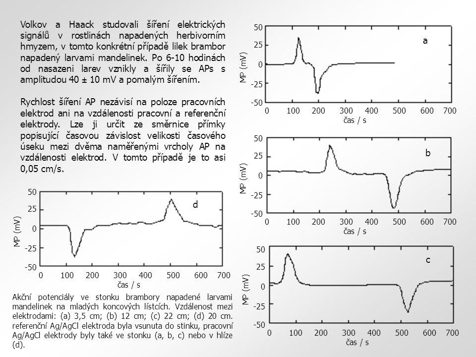 Volkov a Haack studovali šíření elektrických signálů v rostlinách napadených herbivorním hmyzem, v tomto konkrétní případě lilek brambor napadený larvami mandelinek.