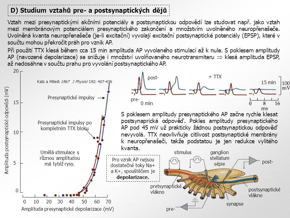 D) Studium vztahů pre- a postsynaptických dějů Vztah mezi presynaptickými akčními potenciály a postsynaptickou odpovědí lze studovat např.