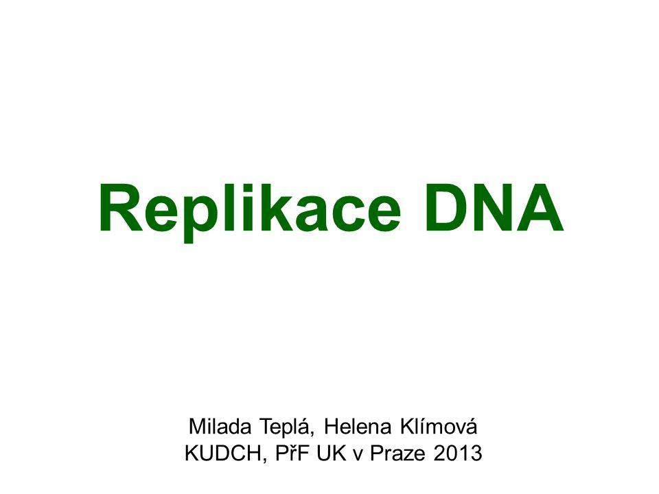 Replikace DNA Milada Teplá, Helena Klímová KUDCH, PřF UK v Praze 2013