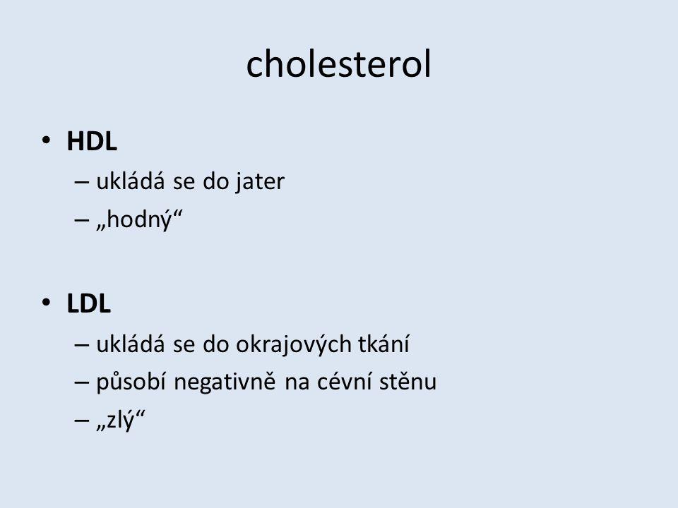 """cholesterol HDL – ukládá se do jater – """"hodný LDL – ukládá se do okrajových tkání – působí negativně na cévní stěnu – """"zlý"""