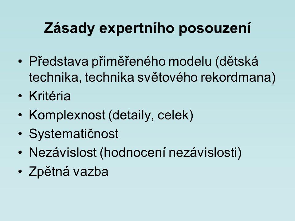 Zásady expertního posouzení Představa přiměřeného modelu (dětská technika, technika světového rekordmana) Kritéria Komplexnost (detaily, celek) System