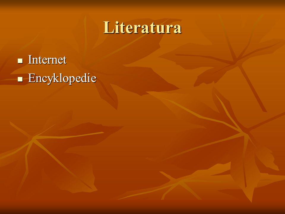 Literatura Internet Internet Encyklopedie Encyklopedie