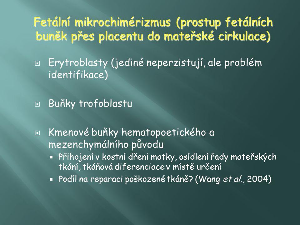 Fetální mikrochimérizmus (prostup fetálních buněk přes placentu do mateřské cirkulace)  Erytroblasty (jediné neperzistují, ale problém identifikace)