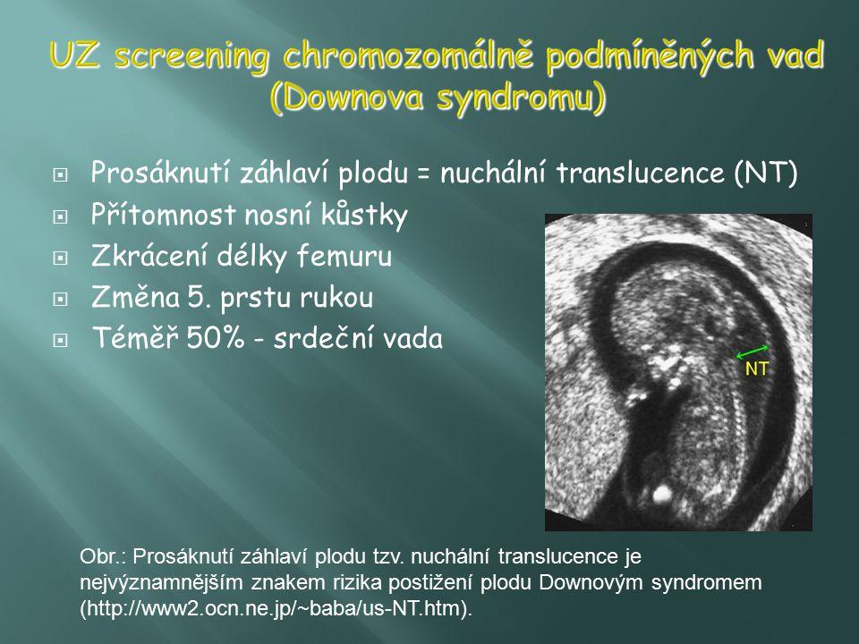 Prosáknutí záhlaví plodu = nuchální translucence (NT)  Přítomnost nosní kůstky  Zkrácení délky femuru  Změna 5. prstu rukou  Téměř 50% - srdeční