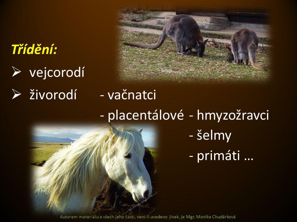 Třídění:  vejcorodí  živorodí- vačnatci - placentálové- hmyzožravci - šelmy - primáti …