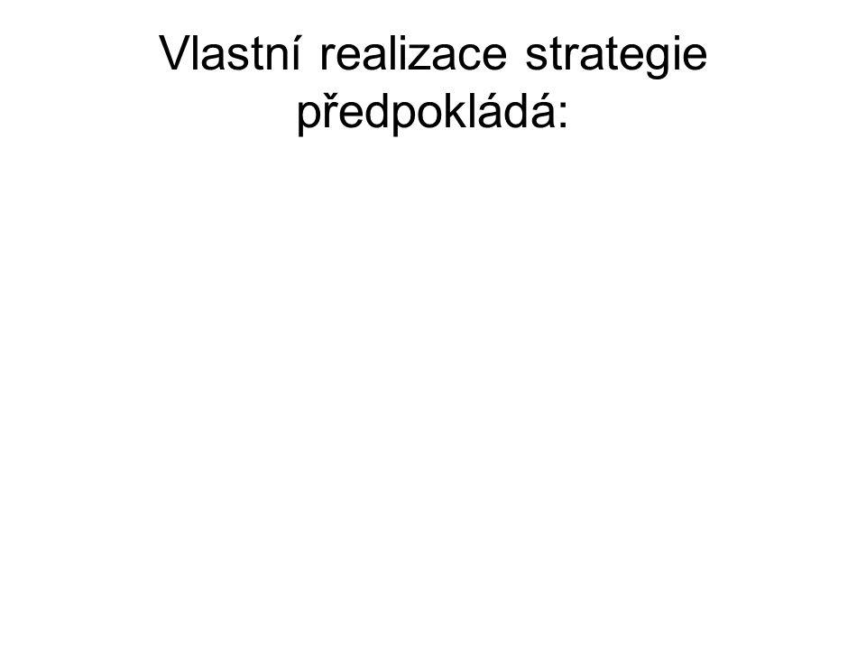 Vlastní realizace strategie předpokládá: