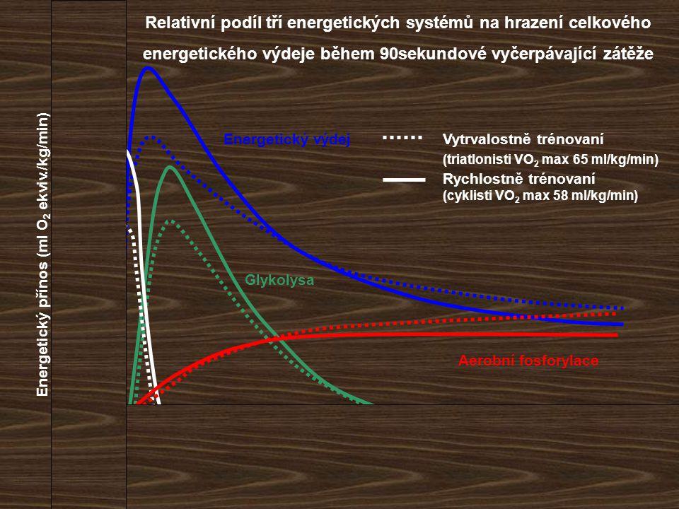203040506070809010 0 čas (s) Energetický přínos (ml O 2 ekviv./kg/min) 20 180 160 140 120 100 80 60 40 0 Vytrvalostně trénovaní (triatlonisti VO 2 max