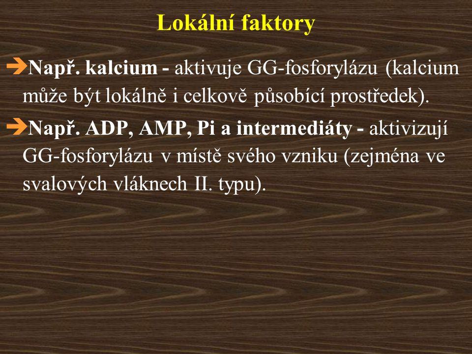 Lokální faktory  Např. kalcium - aktivuje GG-fosforylázu (kalcium může být lokálně i celkově působící prostředek).  Např. ADP, AMP, Pi a intermediát