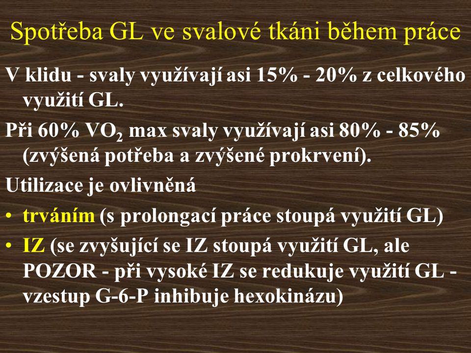 Spotřeba GL ve svalové tkáni během práce V klidu - svaly využívají asi 15% - 20% z celkového využití GL. Při 60% VO 2 max svaly využívají asi 80% - 85