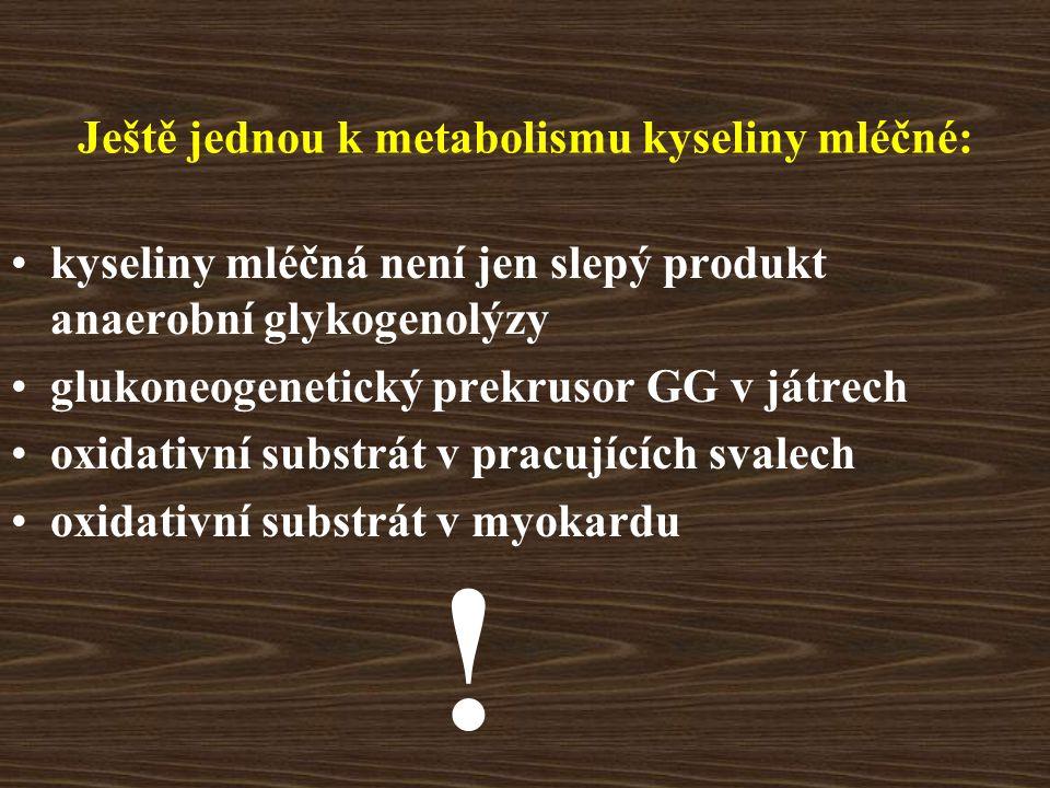 Ještě jednou k metabolismu kyseliny mléčné: kyseliny mléčná není jen slepý produkt anaerobní glykogenolýzy glukoneogenetický prekrusor GG v játrech ox