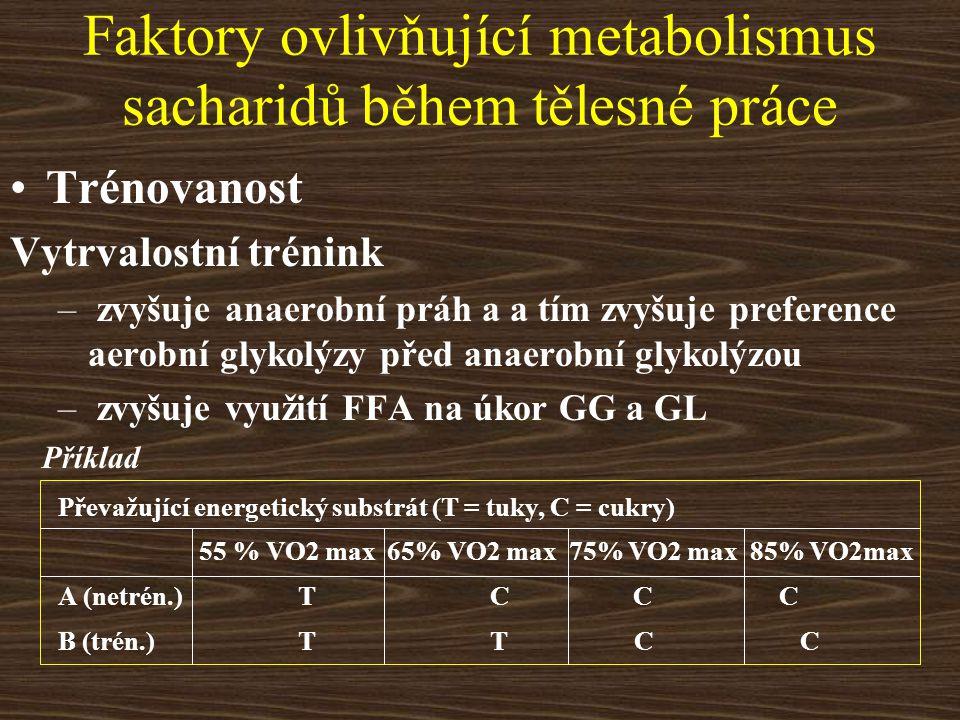 Faktory ovlivňující metabolismus sacharidů během tělesné práce Trénovanost Vytrvalostní trénink – zvyšuje anaerobní práh a a tím zvyšuje preference ae
