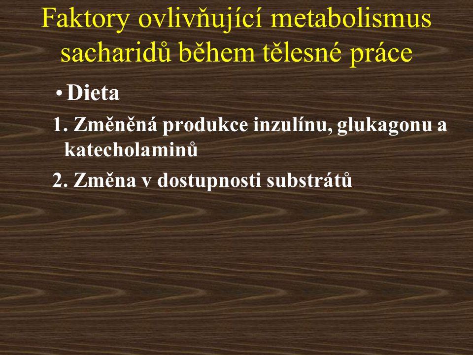 Faktory ovlivňující metabolismus sacharidů během tělesné práce Dieta 1. Změněná produkce inzulínu, glukagonu a katecholaminů 2. Změna v dostupnosti su