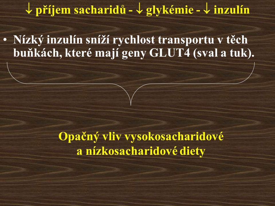  příjem sacharidů -  glykémie -  inzulín Nízký inzulín sníží rychlost transportu v těch buňkách, které mají geny GLUT4 (sval a tuk). Opačný vliv vy