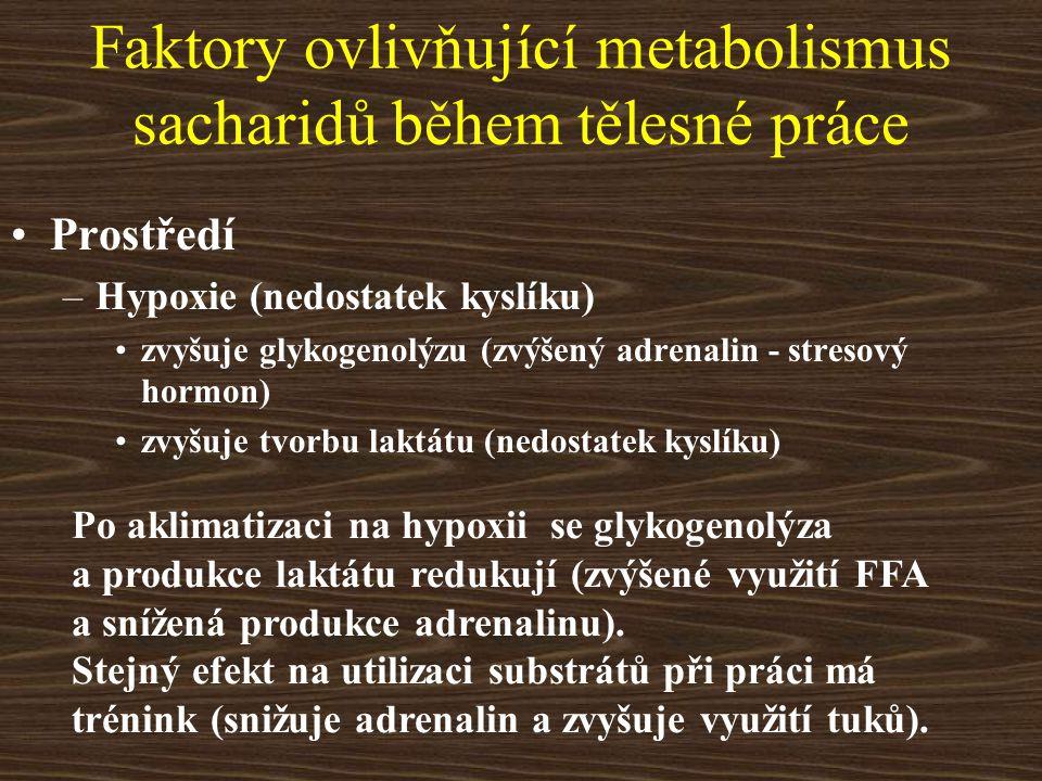Faktory ovlivňující metabolismus sacharidů během tělesné práce Prostředí –Hypoxie (nedostatek kyslíku) zvyšuje glykogenolýzu (zvýšený adrenalin - stre