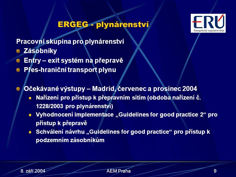 8. září 2004AEM Praha9 ERGEG - plynárenství Pracovní skupina pro plynárenství Zásobníky Entry – exit systém na přepravě Přes-hraniční transport plynu