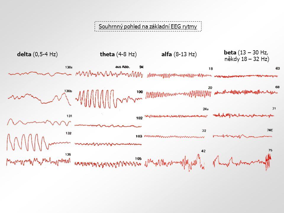 Souhrnný pohled na základní EEG rytmy delta (0,5-4 Hz) beta (13 – 30 Hz, někdy 18 – 32 Hz) alfa (8-13 Hz)theta (4-8 Hz)