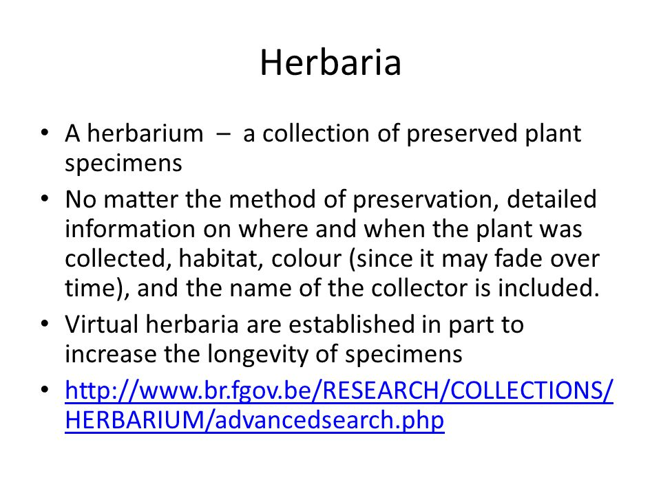 Herbaria A herbarium – a collection of preserved plant specimens No matter the method of preservation, detailed information on where and when the plant was collected, habitat, colour (since it may fade over time), and the name of the collector is included.