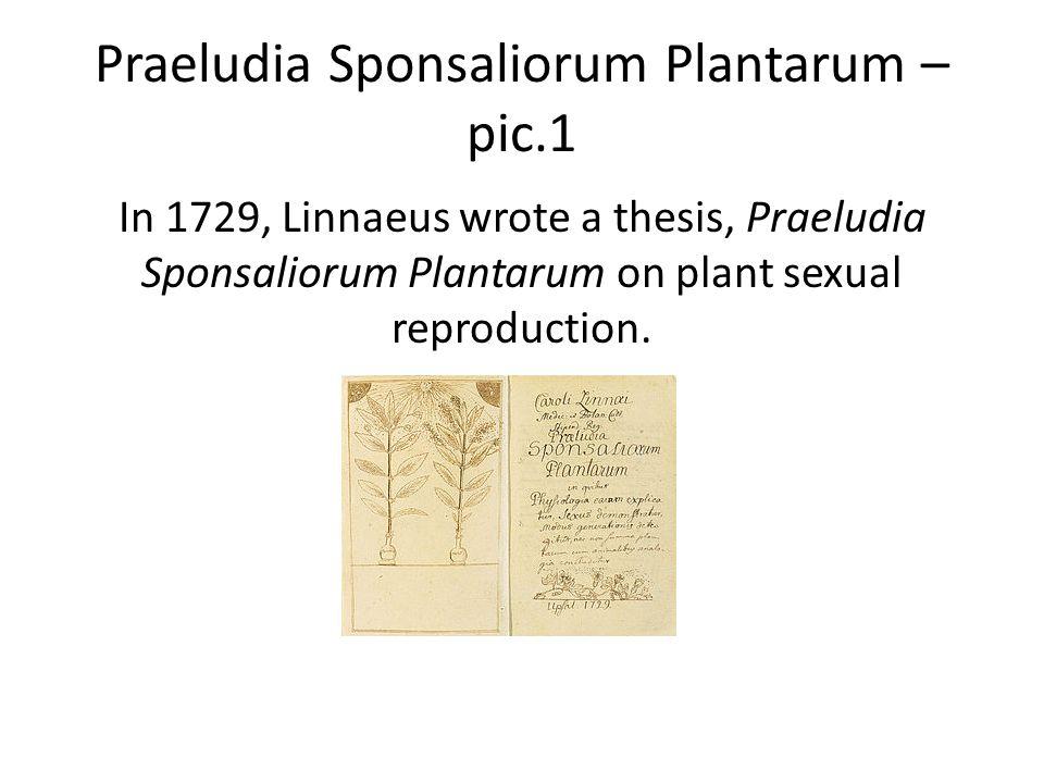 Praeludia Sponsaliorum Plantarum – pic.1 In 1729, Linnaeus wrote a thesis, Praeludia Sponsaliorum Plantarum on plant sexual reproduction.