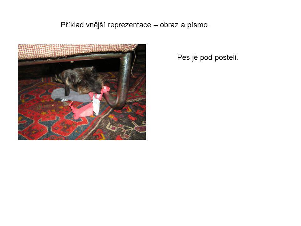 Pes je pod postelí. Příklad vnější reprezentace – obraz a písmo.