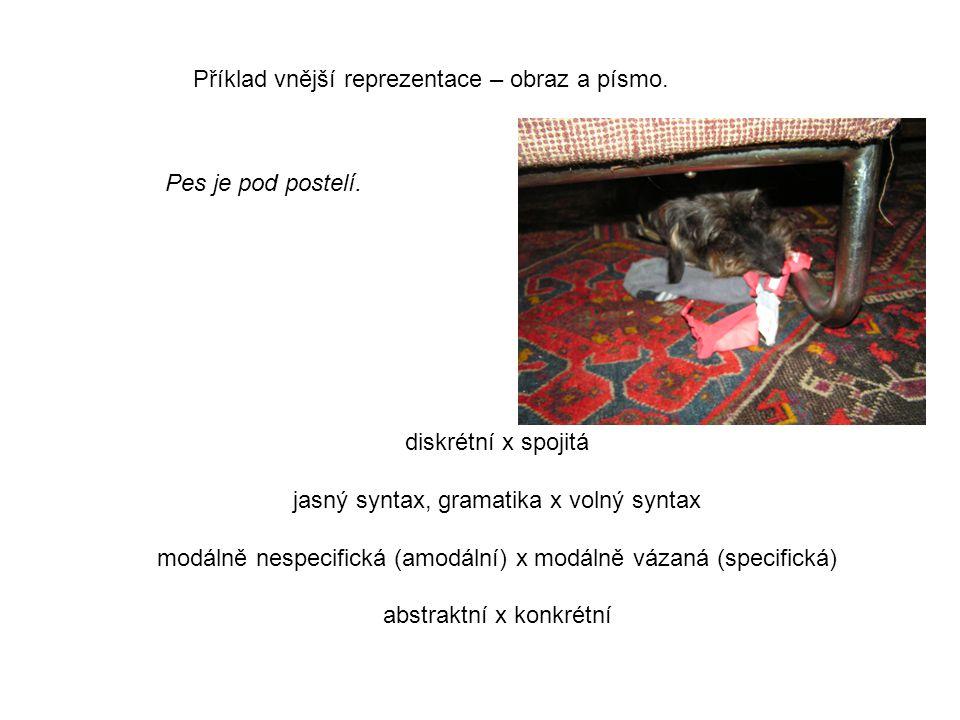 Pes je pod postelí. Příklad vnější reprezentace – obraz a písmo. diskrétní x spojitá jasný syntax, gramatika x volný syntax modálně nespecifická (amod