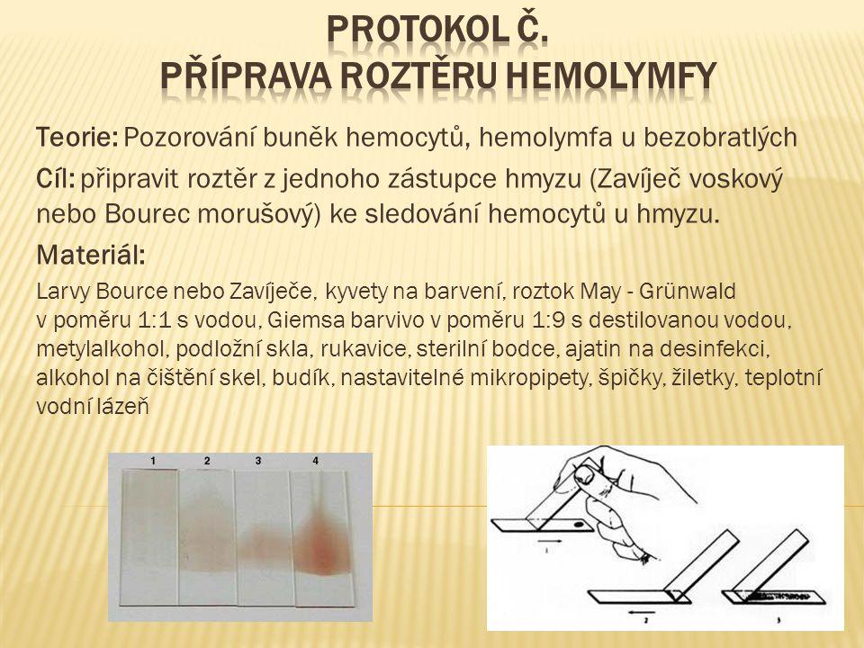  Postup práce:  Ustřihneme 1 nožku larvy a vytékající hemolymfu zachytíme kapkou na sklíčko a kapku rozetřeme a sklíčko s nátěrem zahřejeme  Barvení podle Pappenheima v kyvetách:  3 min.