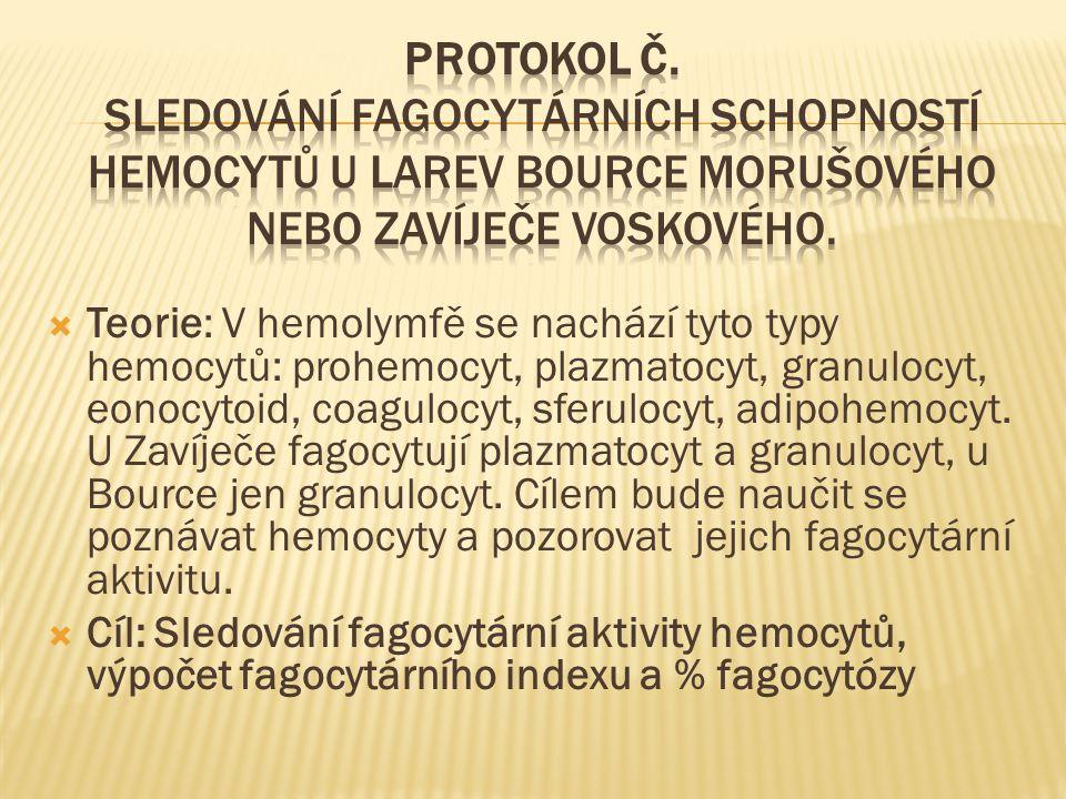  Teorie: V hemolymfě se nachází tyto typy hemocytů: prohemocyt, plazmatocyt, granulocyt, eonocytoid, coagulocyt, sferulocyt, adipohemocyt. U Zavíječe