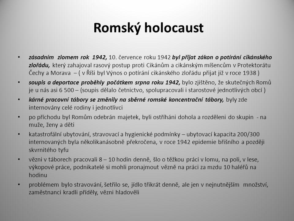 Romský holocaust zásadním zlomem rok 1942, 10. července roku 1942 byl přijat zákon o potírání cikánského zlořádu, který zahajoval rasový postup proti