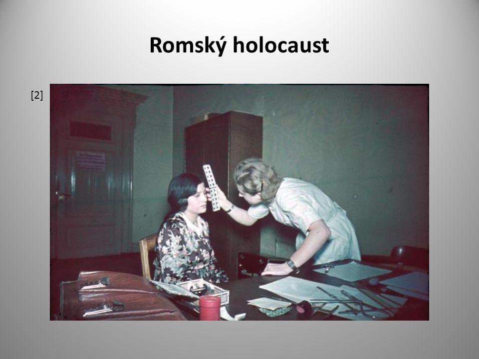 Romský holocaust [2]