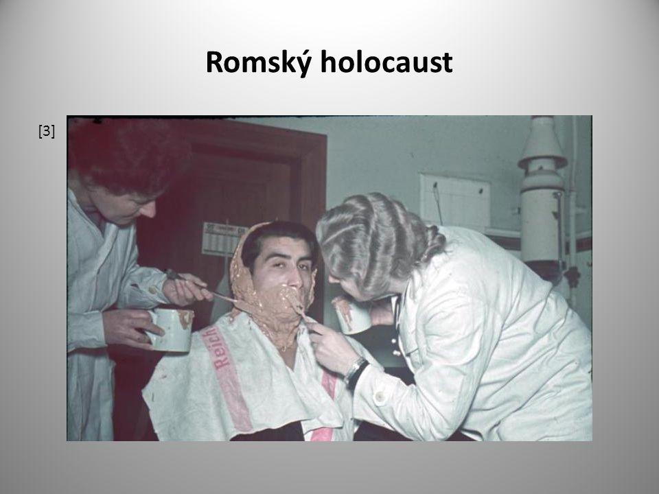 Romský holocaust [3]