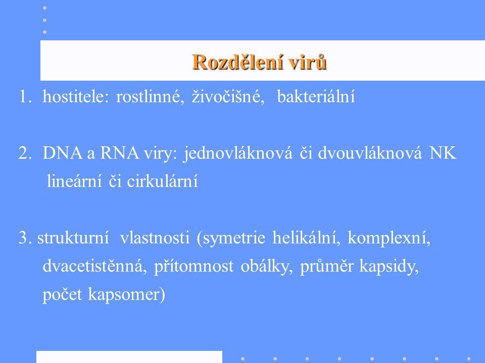 1.hostitele: rostlinné, živočišné, bakteriální 2.DNA a RNA viry: jednovláknová či dvouvláknová NK lineární či cirkulární 3. strukturní vlastnosti (sym
