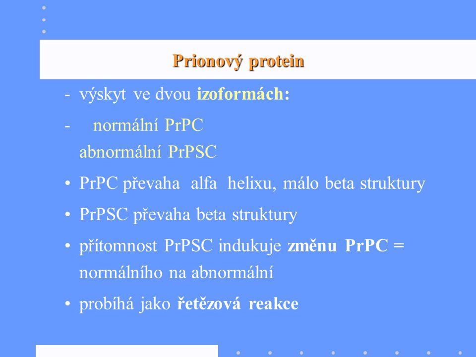 Prionový protein -výskyt ve dvou izoformách: - normální PrPC abnormální PrPSC PrPC převaha alfa helixu, málo beta struktury PrPSC převaha beta struktu