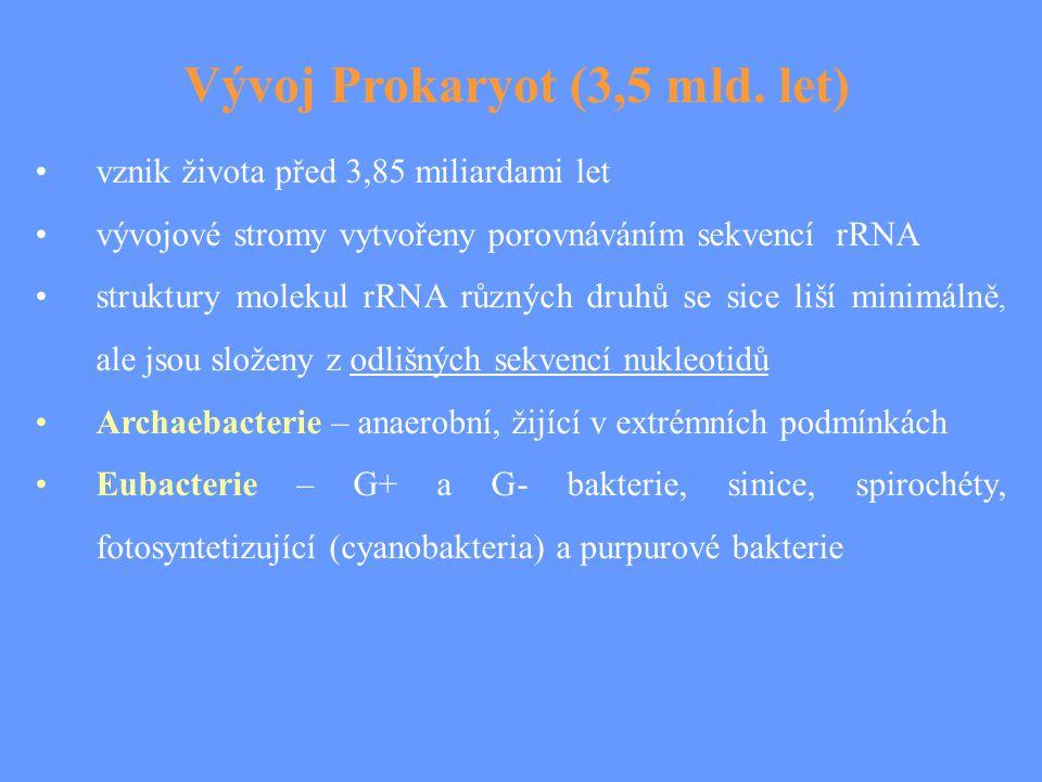 Vývoj Prokaryot (3,5 mld. let) vznik života před 3,85 miliardami let vývojové stromy vytvořeny porovnáváním sekvencí rRNA struktury molekul rRNA různý