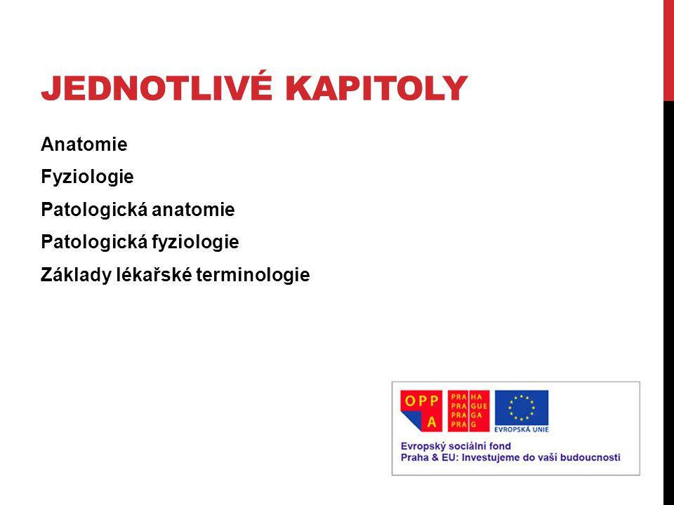 JEDNOTLIVÉ KAPITOLY Anatomie Fyziologie Patologická anatomie Patologická fyziologie Základy lékařské terminologie