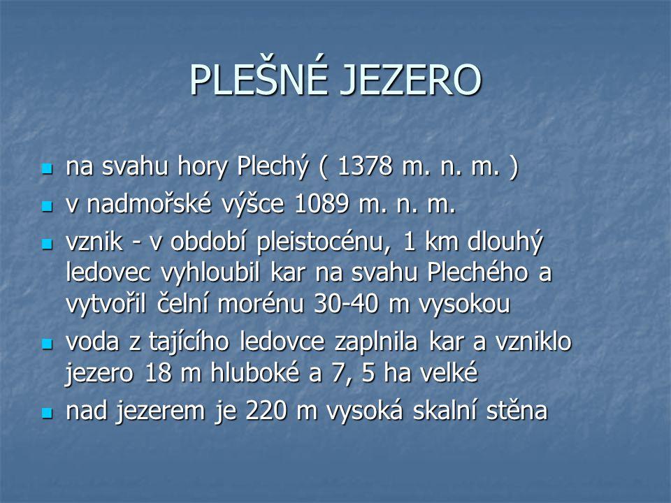 PLEŠNÉ JEZERO na svahu hory Plechý ( 1378 m. n. m. ) na svahu hory Plechý ( 1378 m. n. m. ) v nadmořské výšce 1089 m. n. m. v nadmořské výšce 1089 m.