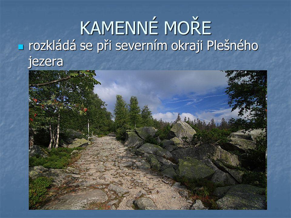KAMENNÉ MOŘE rozkládá se při severním okraji Plešného jezera rozkládá se při severním okraji Plešného jezera