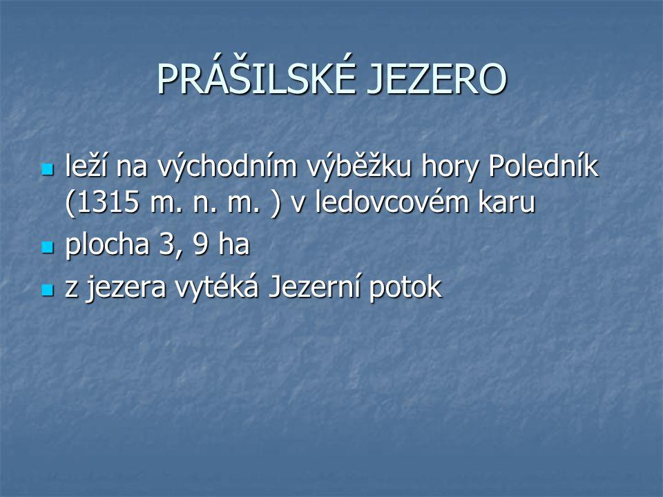 PRÁŠILSKÉ JEZERO leží na východním výběžku hory Poledník (1315 m. n. m. ) v ledovcovém karu leží na východním výběžku hory Poledník (1315 m. n. m. ) v