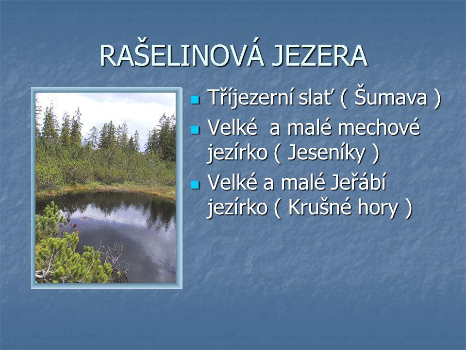 ČERNÉ JEZERO největší z 8 šumavských jezer (5 v ČR, 3 v Bavorsku ) největší z 8 šumavských jezer (5 v ČR, 3 v Bavorsku ) leží v nadmořské výšce 1 008 m leží v nadmořské výšce 1 008 m maximální hloubka je 40 m maximální hloubka je 40 m nad jezerem se tyčí 330 m vysoká skalní stěna nad jezerem se tyčí 330 m vysoká skalní stěna dno je kamenité dno je kamenité