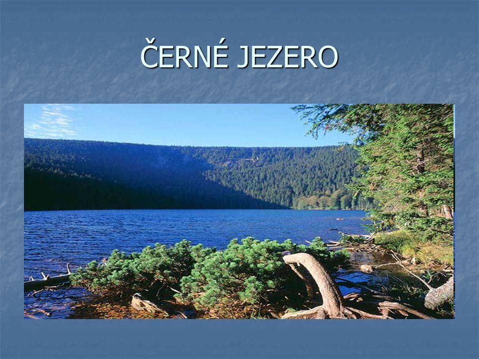 ČERTOVO JEZERO na jižním svahu Jezerní hory na jižním svahu Jezerní hory národní přírodní rezervace ( rok 1911 ) národní přírodní rezervace ( rok 1911 ) po hřebeni Jezerní hory probíhá hlavní evropské rozvodí mezi Severním ( Černé jezero ) a Černým mořem ( Čertovo jezero) po hřebeni Jezerní hory probíhá hlavní evropské rozvodí mezi Severním ( Černé jezero ) a Černým mořem ( Čertovo jezero)
