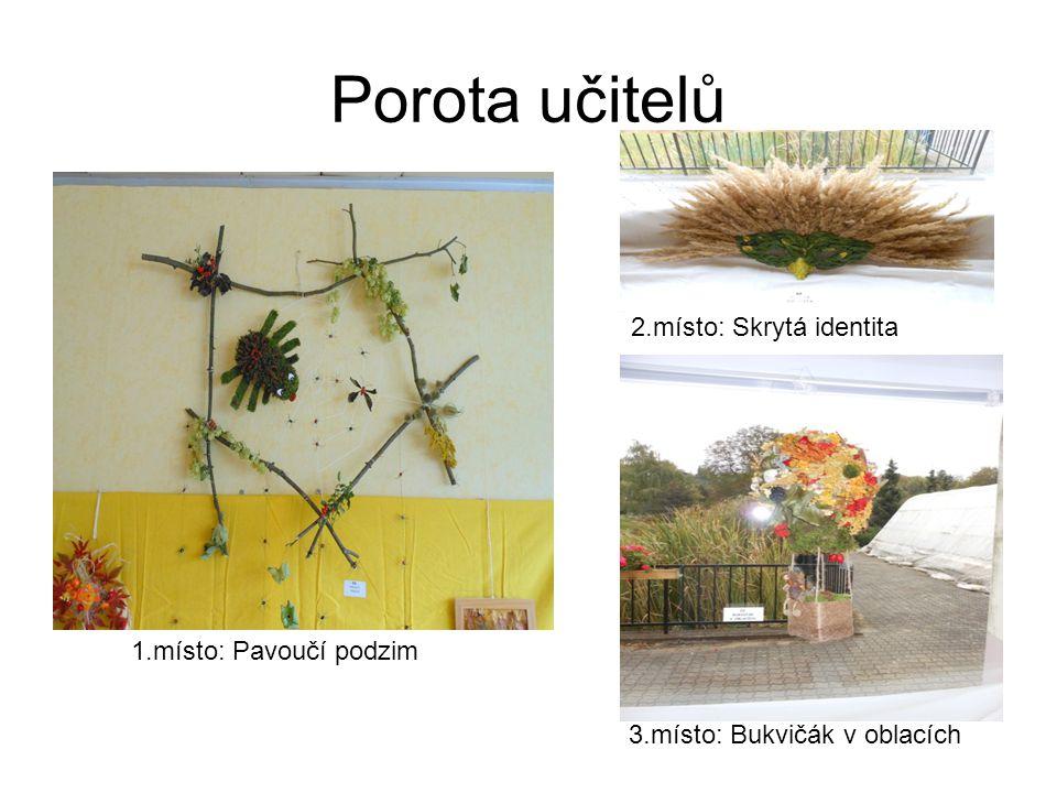 Porota učitelů 1.místo: Pavoučí podzim 2.místo: Skrytá identita 3.místo: Bukvičák v oblacích